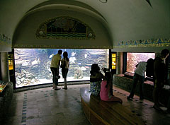 In the middle of the picture it is the larges fish tank of the Aquarium (23 000 liters) - Budapešť, Maďarsko