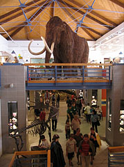 The two-story central hall of the museum with a mounted woolly mammoth - Budapešť, Maďarsko