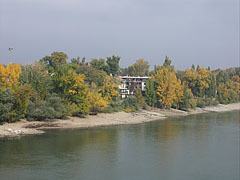 Autumn colors of the Római-part riverbank, viewed from the Northern Railway Bridge - Budapeşte, Macaristan