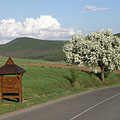 The border of the village with the Nógrád Hills and flowering fruit trees - Hollókő, Macaristan