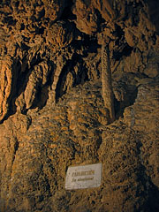 "Anna Cave, ""Apple tree of Eve in the Paradise"" limestone formation - Lillafüred, Macaristan"