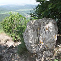 Limestone rock at the Fekete-kő rocks - Pilis Mountains (Pilis hegység), Macaristan