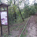 "Educational nature trail, the ""Wildlife of the Nagyberek region"" station - Fonyód, Węgry"