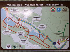 Map of the Miocene Forest - Ipolytarnóc, Węgry