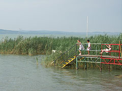 Children are playing on a stairs of the free beach, beside the reed - Balatonlelle, Ungarn