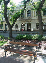 A bench in the park with the Sas Pharmacy in the background - Békéscsaba, Ungarn