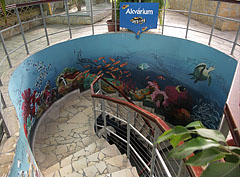 Spiral staircase, a way down from the Palm House to the Aquarium - Budapest, Ungarn