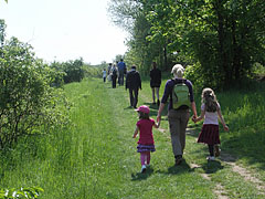 Walking from the buildings of the university to the site of the May Day event - Gödöllő (Getterle), Ungarn