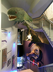 """Way down to """"The Cradle of Life"""" showroom, there are life-size ancient animals around the stairs: a giant armored fish, a cephalopod, and a sea scorpion - Budapest, Ungarn"""