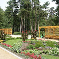 Flowerbeds with annual flowers and other plants - Siófok, Ungern