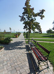 Beach and park in one, with inviting resting benches - Balatonfüred, هنغاريا