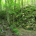 Rocky woods with a small brook, a plate signs that this is a strictly protected area - Aggteleki karszt, Hungary
