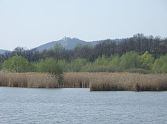 The smaller part of the Sinkár Lake withj reeds on its shore, and in the distance the Castle of Csővár on the hill can be seen - Csővár, Hungary