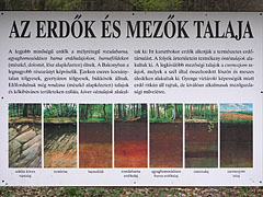 "Station of the educational nature trail: ""The soil of the forests and the fields"" - Eplény, Hungary"