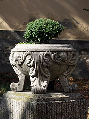A stone vase with a small shrub, in front of the former Franciscan Church - Siklós, Hungary