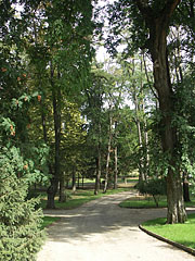 "The 29.5-hectare park (so-called ""Bócz Garden"") of the Andrássy Mansion - Tóalmás, Hungary"