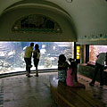 In the middle of the picture it is the larges fish tank of the Aquarium (23 000 liters) - ブダペスト, ハンガリー